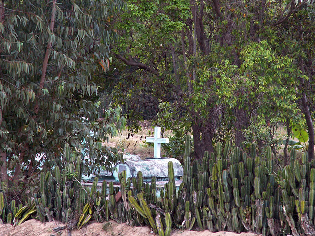 The Cactus Grave
