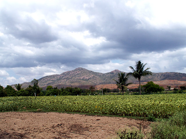 Puttaparthi Mountains